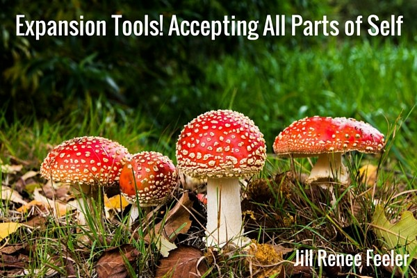 Expansion Tools! Accepting All Parts of Self